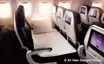 (c) Air New Zealand Limited