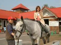 ノーザンホースパーク 乗馬イメージ